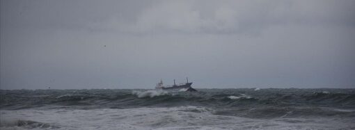 Крушение сухогруза Arvin: спасенные моряки вернулись в Одессу