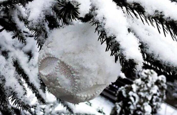 Юг Одесской области засыпало снегом (фото, видео)