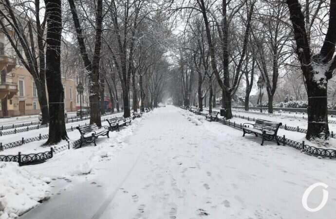 Снег, сильный ветер и гололед: погода в Одессе в первый день февраля