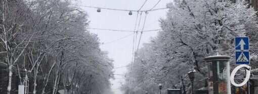 Стихия в Одессе: детям разрешили не пойти в школу