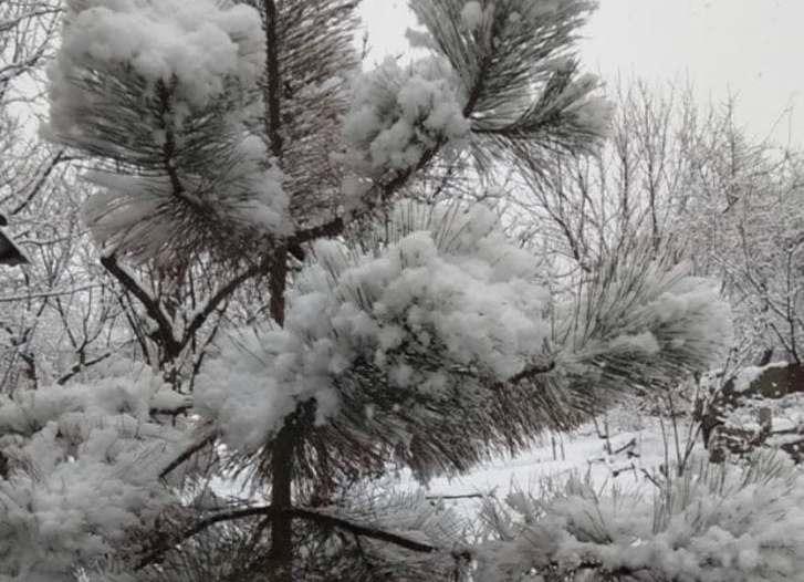 снег на Одесчине
