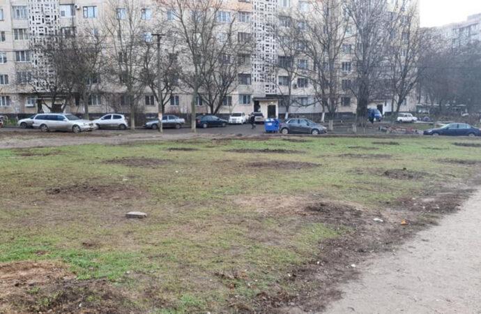 «Зелёные» похитители: во дворе на Таирова ночью выкопали сотню деревьев