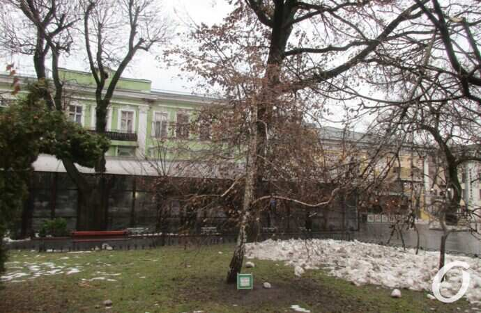 В Украину придет потепление: синоптики назвали дату