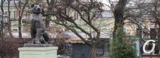 Последствия одесской непогоды: в Горсаду пострадали деревья (фото)