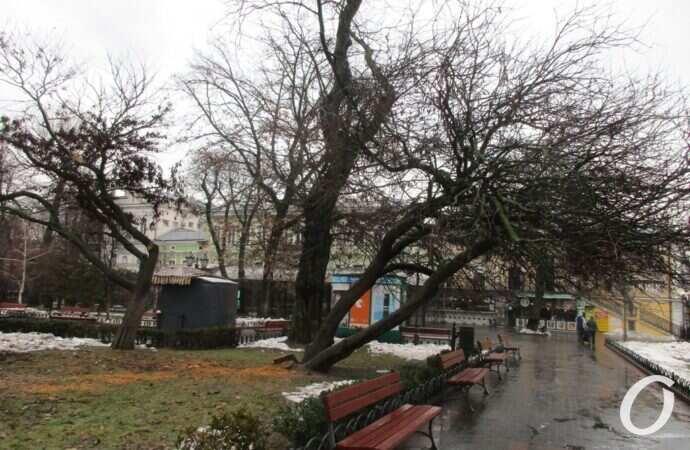 В одесском Горсаду турист с пилой напал на прохожего (видео)