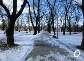Погода в Одессе 15 февраля: будет морозно и скользко