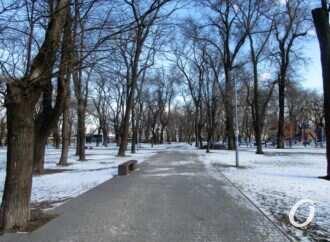 Новая жизнь старой Одессы: что скрывает Старосенной сквер (видео)