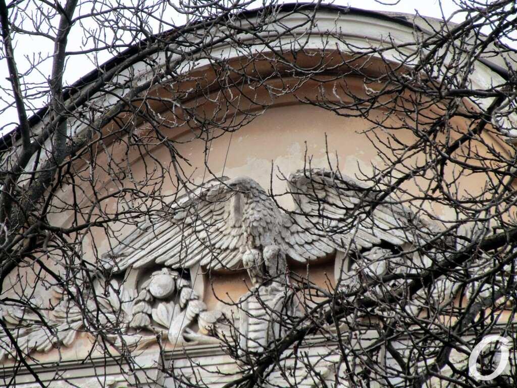 Дом с орлом-гигантом, изображение орла