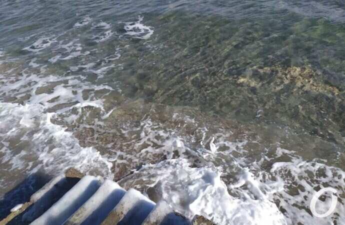 Температура морской воды в Одессе 16 июня: море не холодное, но купаться нежелательно
