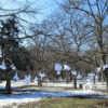 В одесский парк слетелись Ангелы памяти (фото)