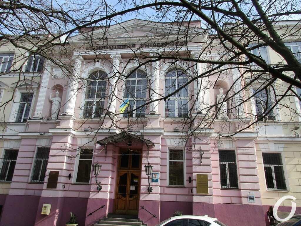 Одесский сквер, Экономический университет
