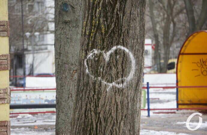 День влюбленных: по Одессе гуляют десятки парочек (фотофакт)
