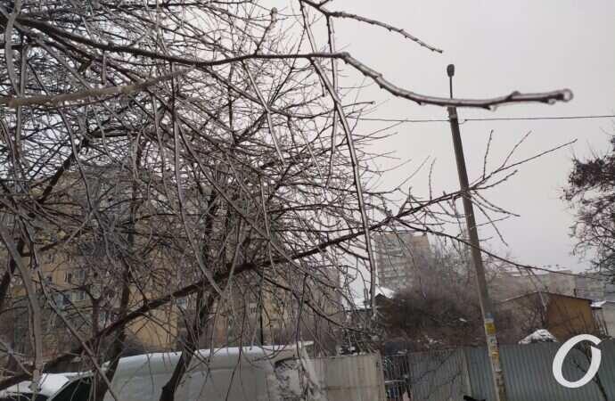 Погода в Одесской области: утренний гололед может смениться вечерними грозами