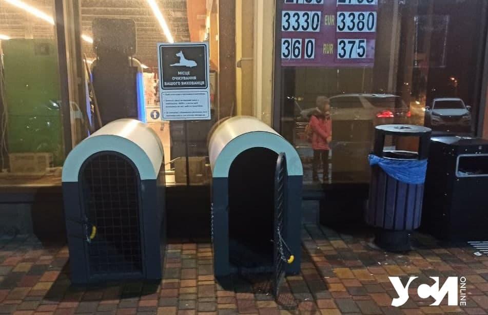 контейнеры для собак