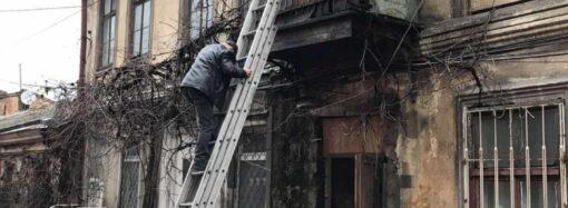 Обрушение в Одессе: жильцов дома, где рухнула лестница, в мэрии обещают отселить (видео)