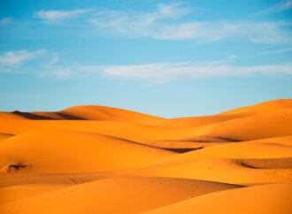 Глобальное потепление: степи Юга Украины могут превратиться в пустыню
