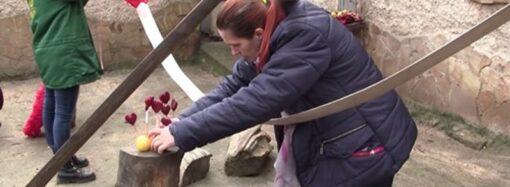Обитателей Одесского зоопарка накормят алыми сердечками (видео)