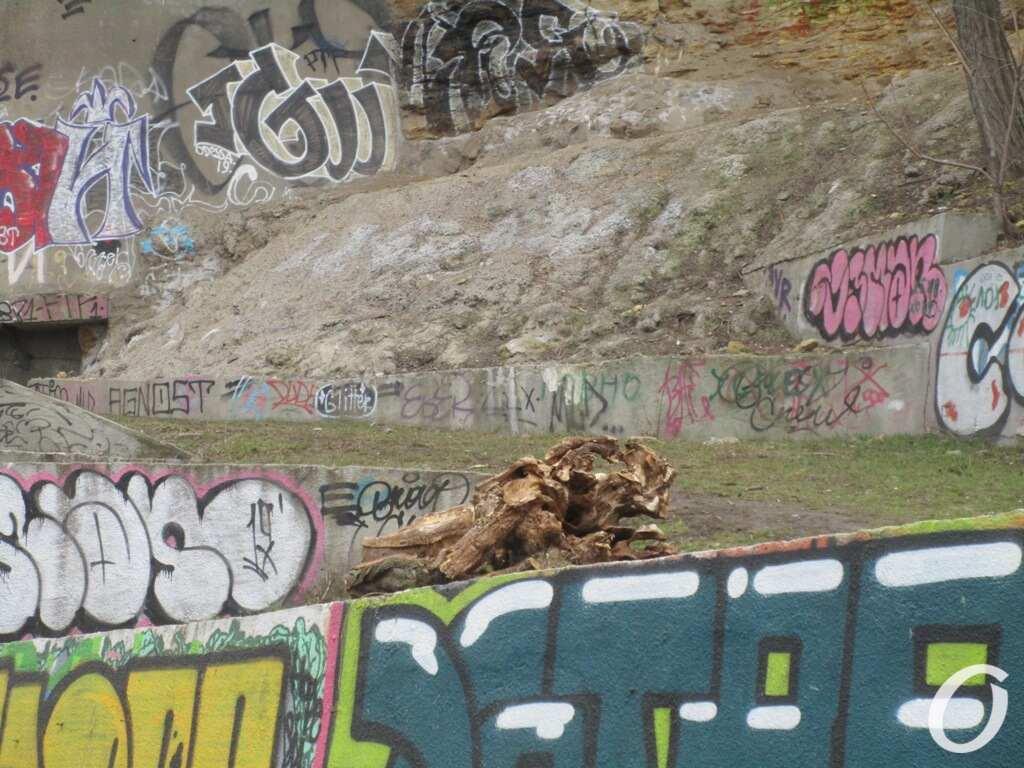 Под Тещиным мостом, запустение