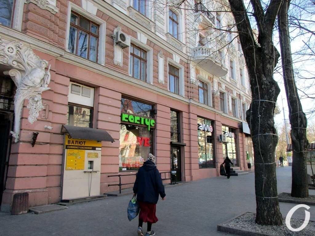 Новый локдаун в Одессе, Кактус