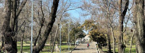 Погода в Одессе 11 апреля: днем до +17 тепла