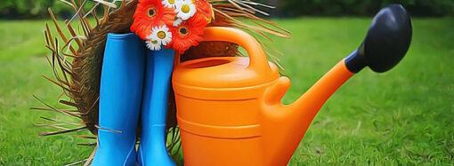 Дачные советы: сад, огород, виноградник, цветник – что нужно сделать в марте