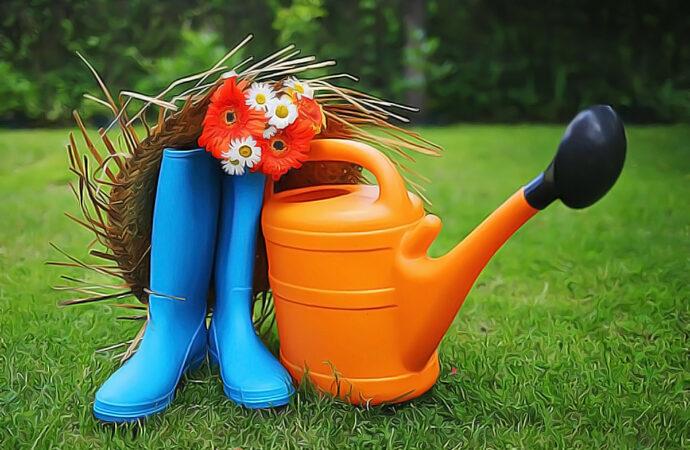 Дачные советы: сад, огород, виноградник, цветник — что нужно сделать в марте