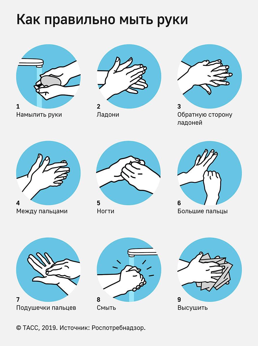 моем руки правильно