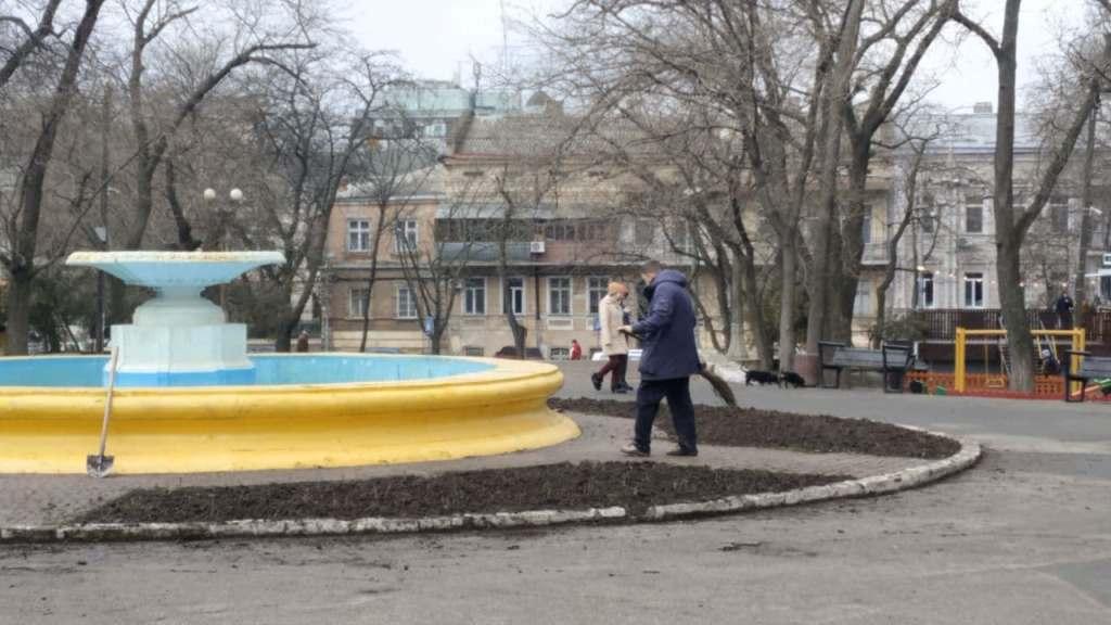 в парке Шевченко высадят розы