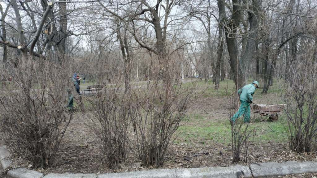 озеленение парка Шевченко