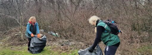 Всемирный день уборки: где смогут навести порядок одесситы