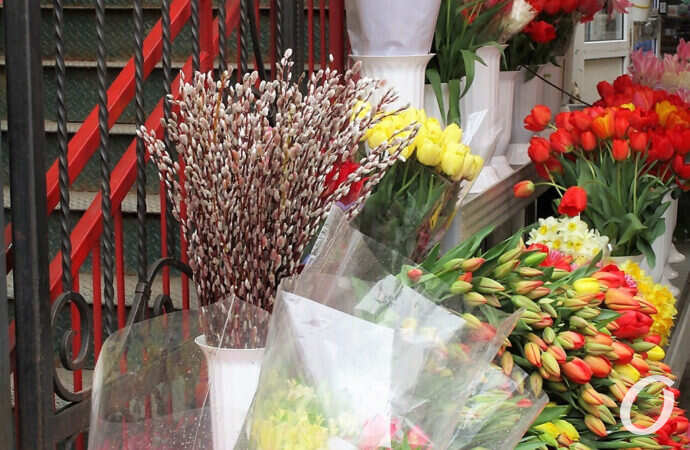 Погода в Одессе 25 апреля: каким будет вербное воскресенье?