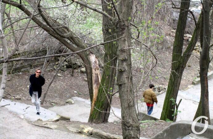 «Велодорожный» план и «иной мир» под бульваром – самые интересные новости Одессы за 21 апреля