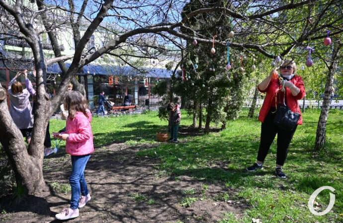 В одесском Горсаду расцвело Пасхальное дерево (фоторепортаж)