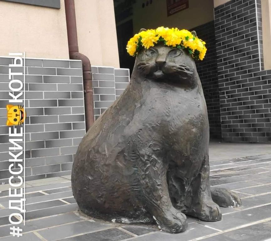 Кошачья тропа, Базарина