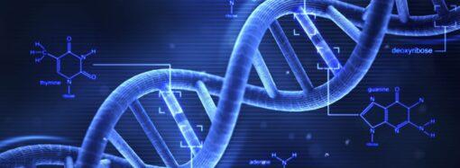 Этот день в истории: открытие молекулярной структуры ДНК