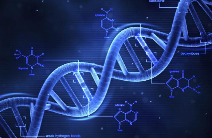 Этот день в истории: кто установил уникальность ДНК?