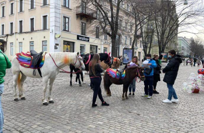 В Одессе на Дерибасовской оштрафовали эксплуататоров коней (фото)