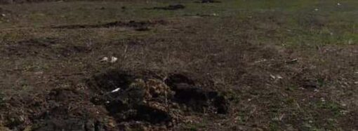 Ничего святого: в Одессе «поработали» экскаватором на месте массовых расстрелов (фото)