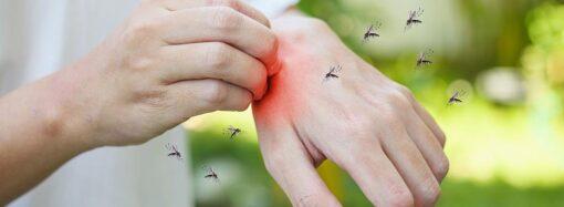 Как различить укусы насекомых, чем они опасны, как помочь пострадавшему?