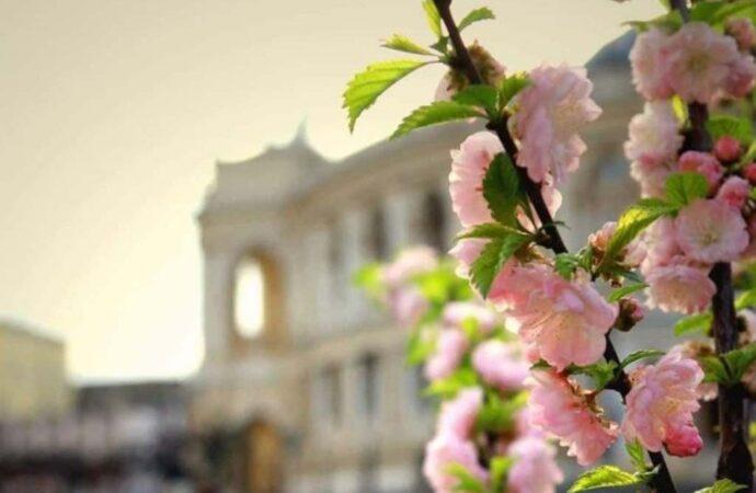 Погода в Одессе: каким обещает быть 8 апреля