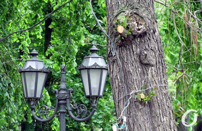Погода в Одессе 23 мая: дожди отступили