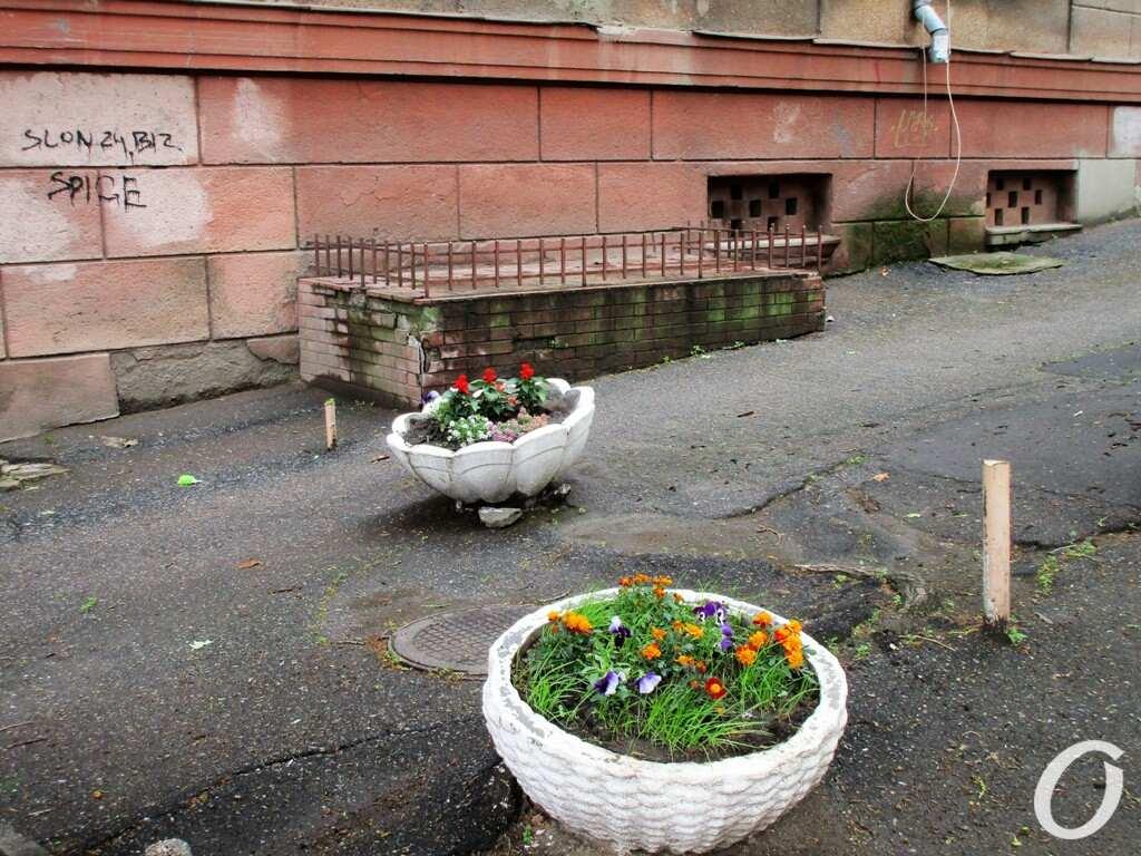 Военный спуск, цветы