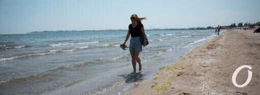 Температура морской воды в Одессе 26 сентября: на любителя, но попробовать можно