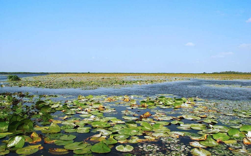 Заповедное озеро Белое