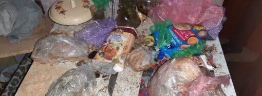 В Одессе спасли от голода троих детей