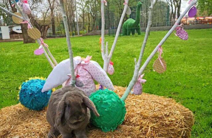 В Одесском зоопарке появились пасхальные фотозоны