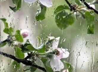 Погода в Одессе 20 июня: будет ли Троица «штормовой»?