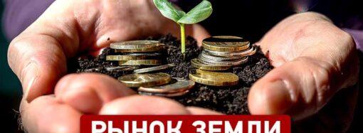 6 вопросов о купле-продаже сельхозземли с 1 июля