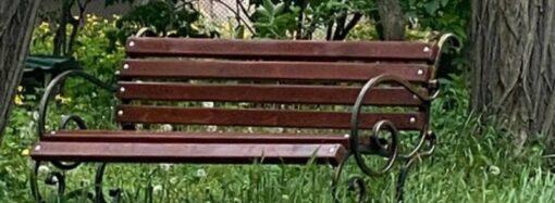 Всё в дом: в Одессе исчезнувшие с прибрежного склона скамейки «материализовались» в жилом дворе (фото)