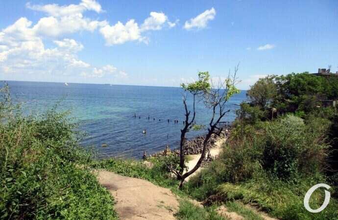 Температура морской воды в Одессе 14 августа: выходной обещает быть пляжным